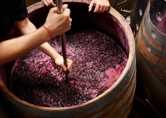 additives-in-winemaking