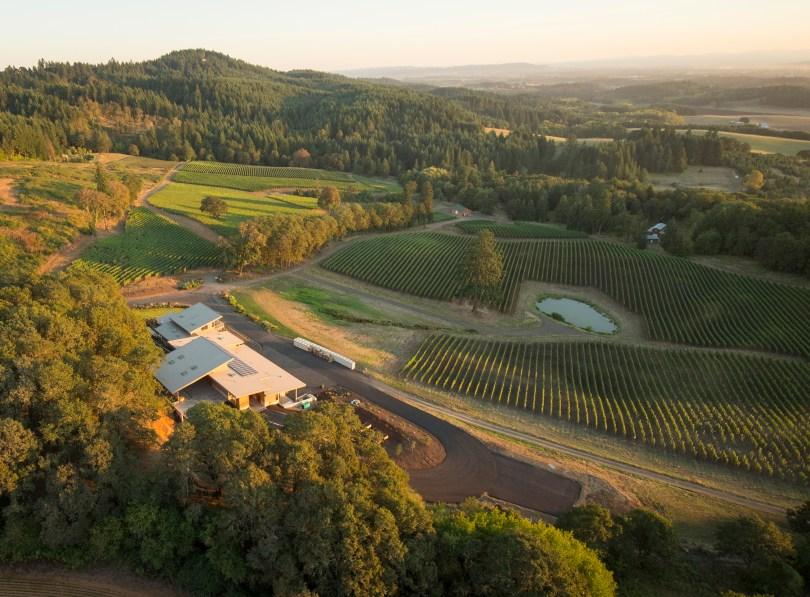 alexana-winery