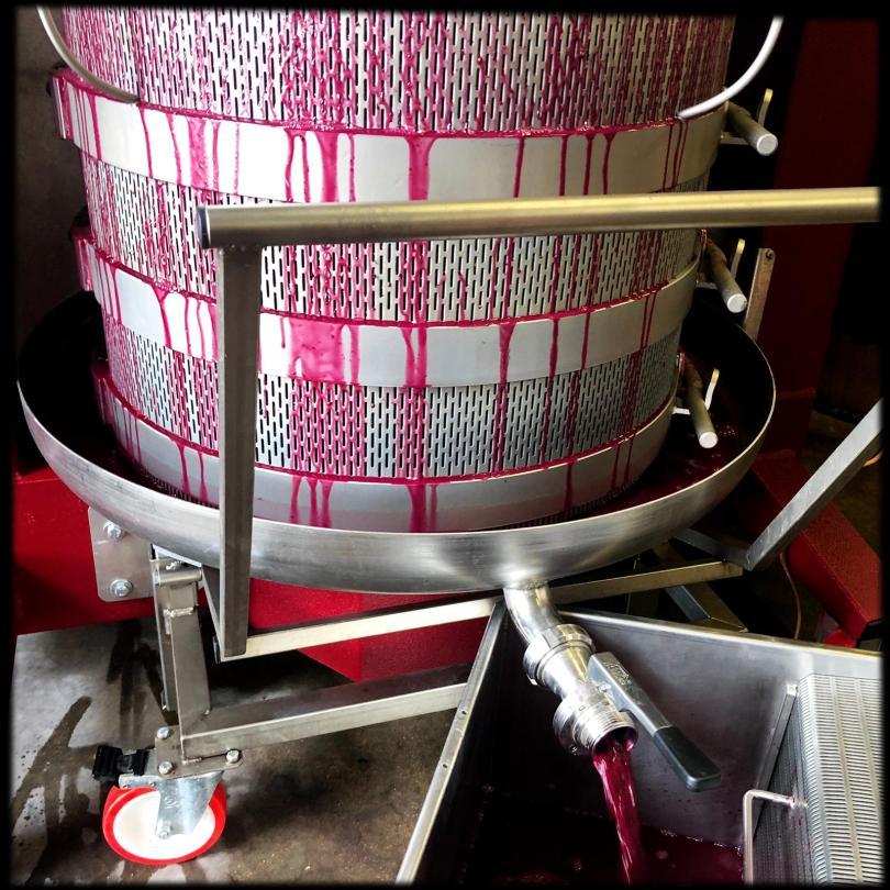 delayed-malolactic-fermentation
