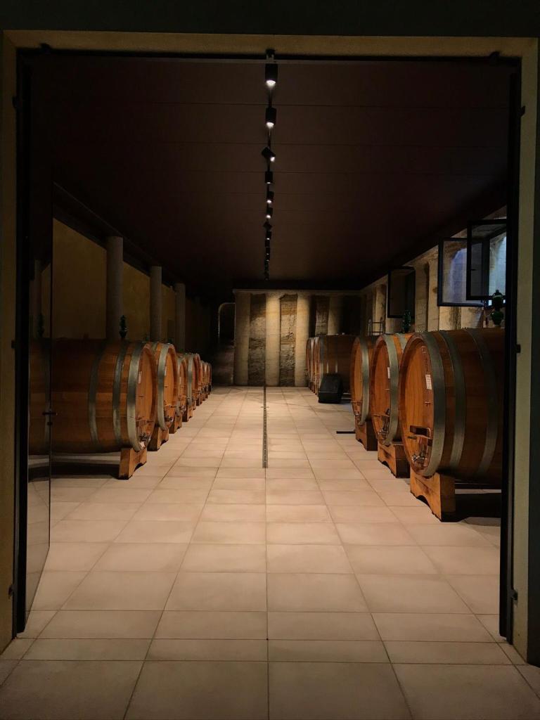 cold-cellar-wine