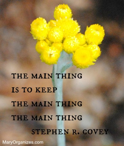 themainthing