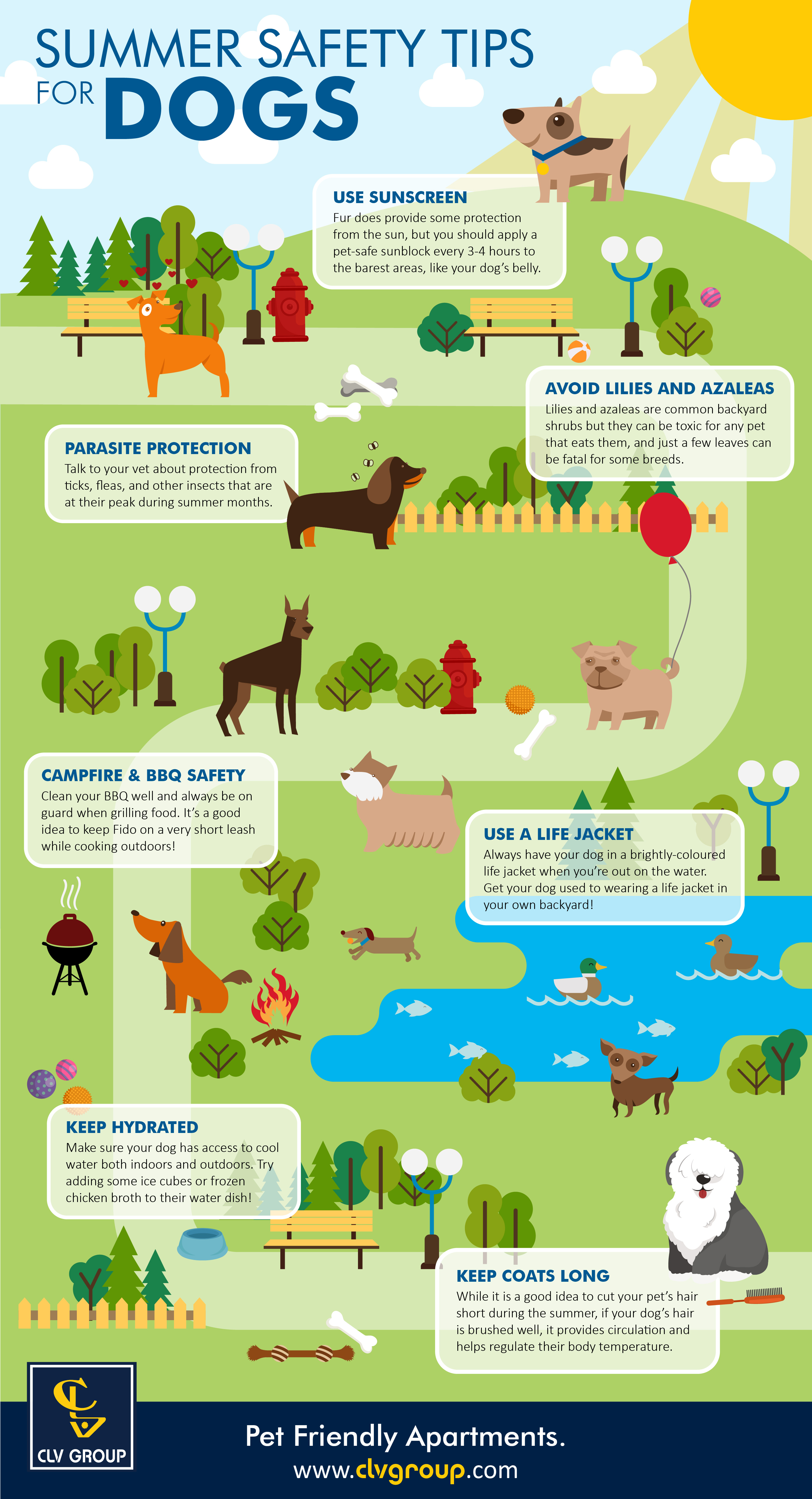 Summer Safety Tips For Dogs INFOGRAPHIC CLV Group