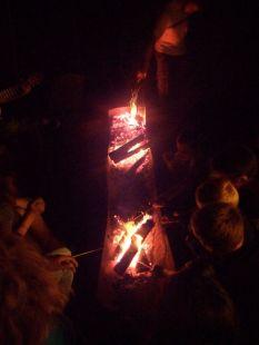 soirée marshmallow préhistoriques autour du feu