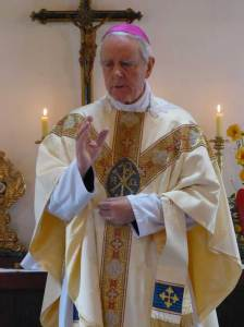 Mgr Williamson, Brésil 2013