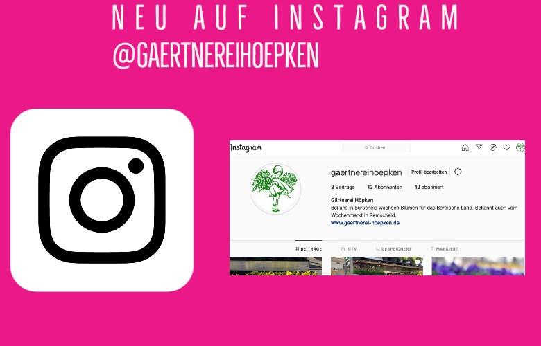 Ankündigung Instagram Gärtnerei Höpken