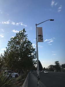 Self-Described Traffic Camera on Light Pole