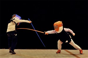 fencing-pic