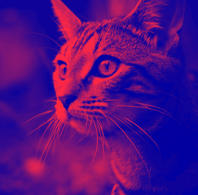 image4 Coloring Your Images With Duotone Filters WPDev News