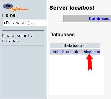 PHPMyAdmin database selection