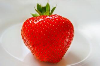 strawberry-361597_1280