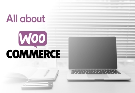 All About Woocommerce Customization
