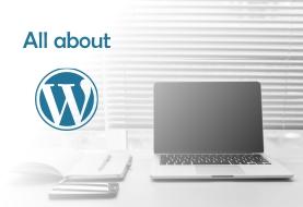All About WordPress Customization