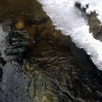 Frozen Stream Flows