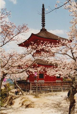 Tahoto Pagoda, Miyajima, Japan 1993