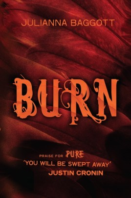 burn_pure_trilogy_julianna_baggott