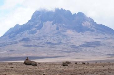 Mawenzi above desert.