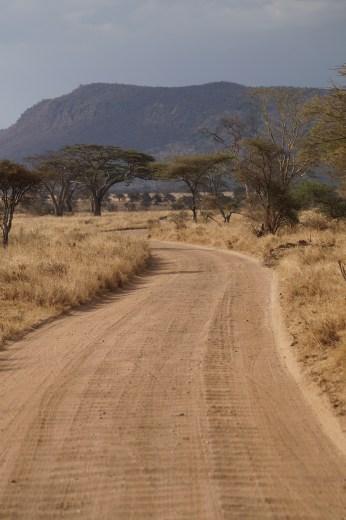 Serengeti road.