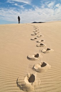 Sand dunes and footprints, Nadgee