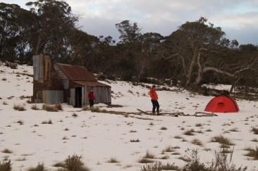 Four Mile Hut orange-fest