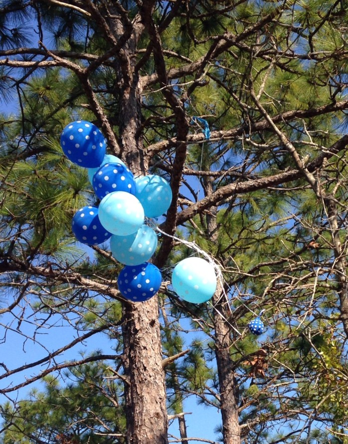 baloons in tree