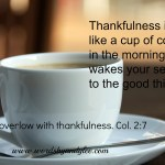 Bible Reading Plan for a Healthier Spirit: 10 Reps of Thankfulness Everyday