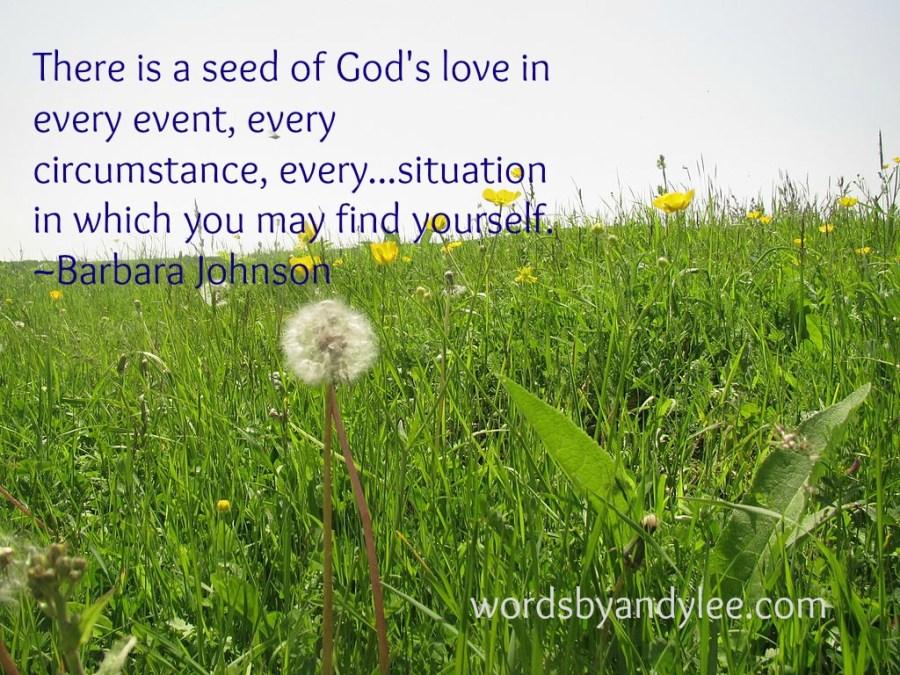 Seed of God's love pic monkey