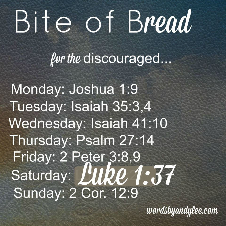 Bite of Bread: Bible Verses for when You Feel Discouraged