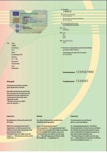 wzor-nowego-holenderskiego-dowodu-rejestracyjnego-czesc-ii-awers Biuro Tłumaczeń Wejherowo Words Connect