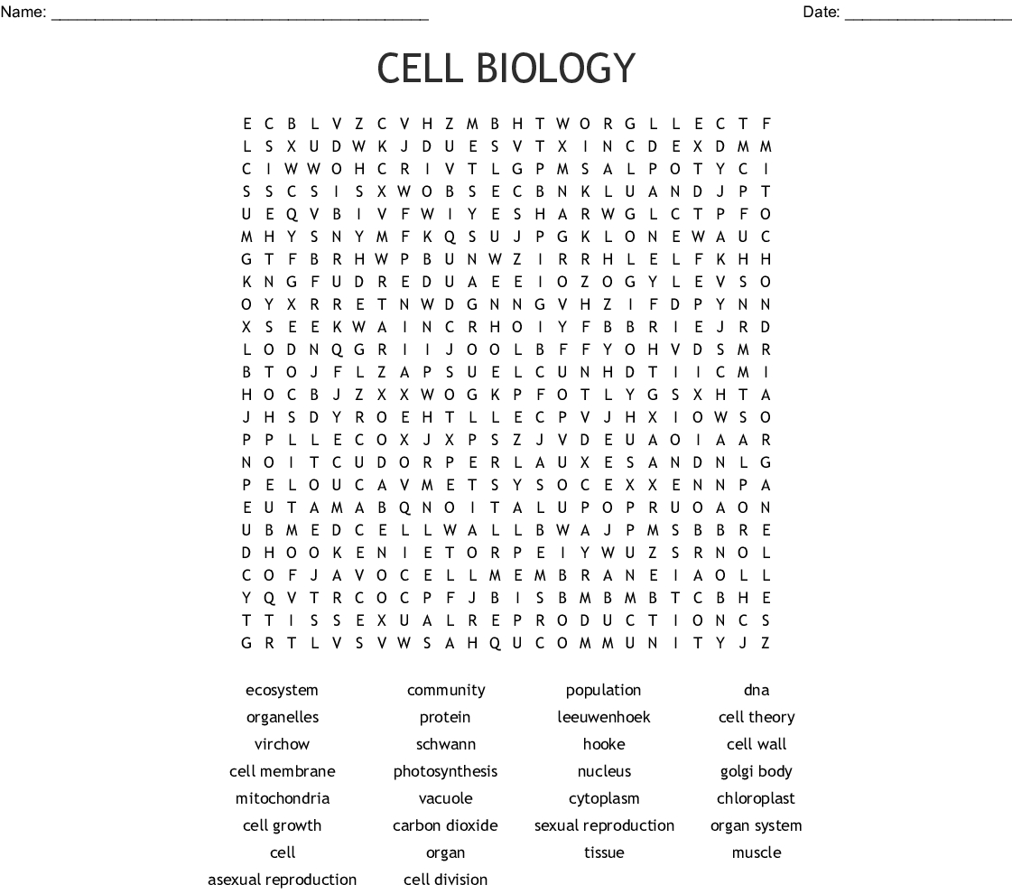 Animal Amp Plant Cell Word Search
