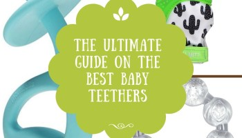 Product Review The Teething Egg Is It Worth The Hype Words