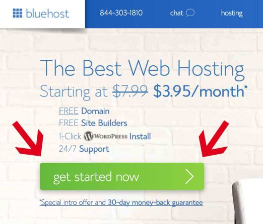 "Two red arrows pointing to the green ""get started now"" button on the Bluehost homepage."