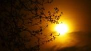 Sonne-Sun