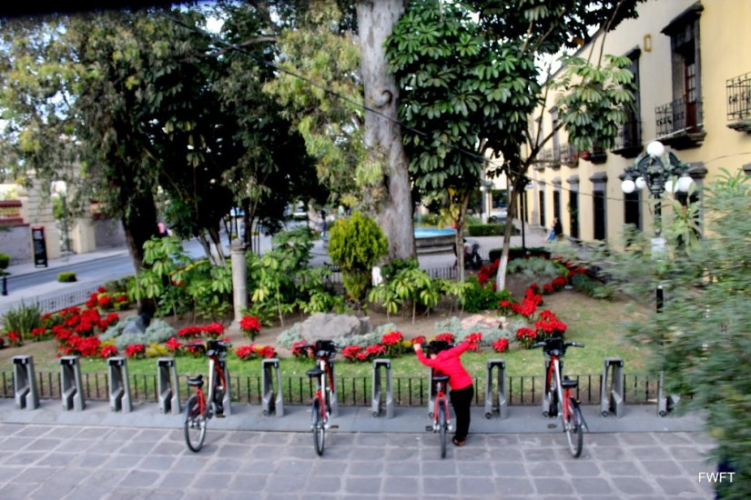 Fancy Cycles in Guadalajara-Mexican City of the future!