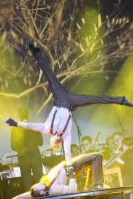 Cirque 17