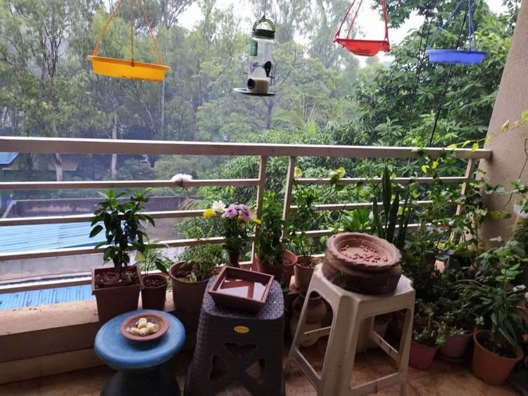 Radhika's Balcony