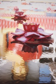 erinjbernard.net, erinjbernard, buddha, buddha reflection, pond, lotus flower, sri lanka, buddhist temple