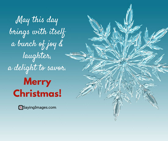 Best christmas cards messages quotes wishes images 2016 word famous christmas quotes m4hsunfo