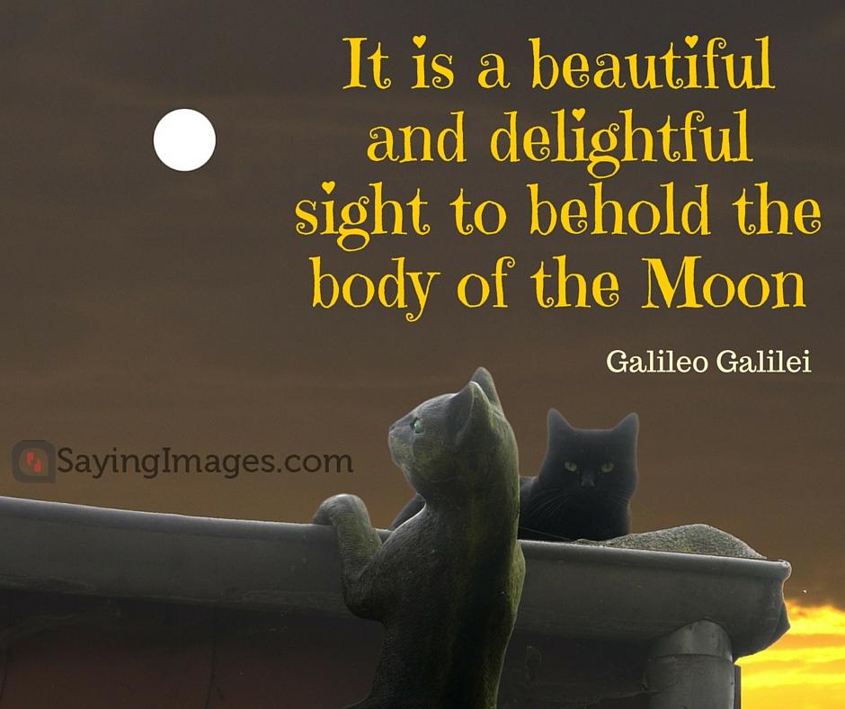 moon love quote