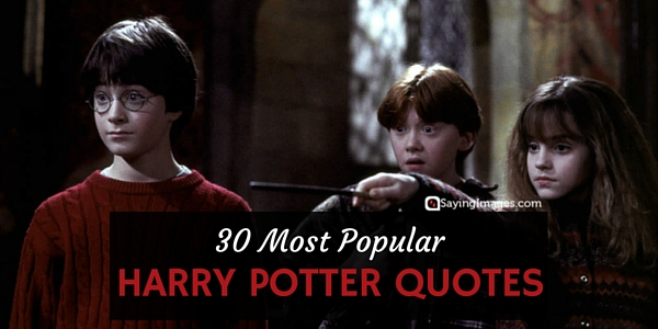 Harry Potter Quote About Friendship Extraordinary 30 Most Popular Harry Potter Quotes  Word Quotes Love
