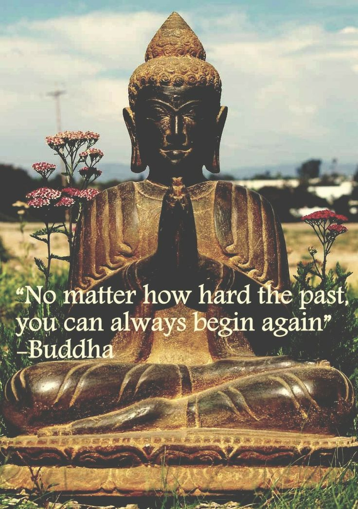 No matter how hard the past, you can always begin again. - Buddha