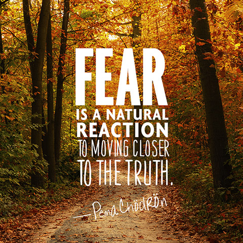 Fear is a natural reaction to moving closer to the truth. - Pema Chödrön