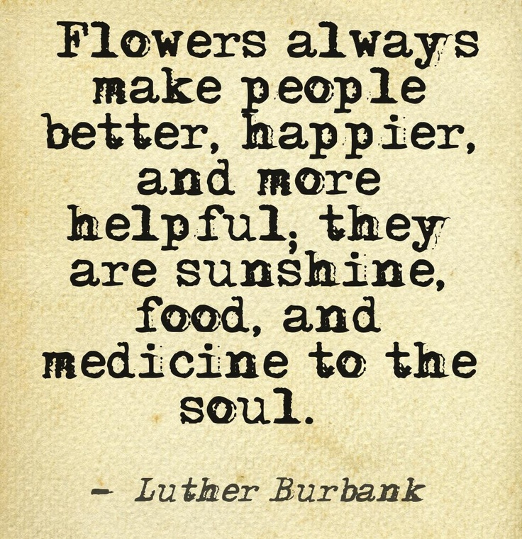 Flowers always make people better, happier, and more helpful; they are sunshine, food medicine to the soul. - Luther Burbank