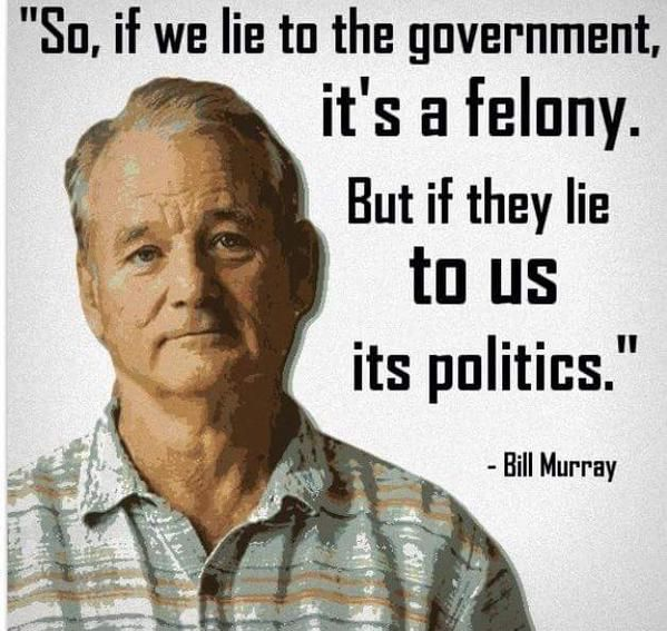 So, if we lie to the government, it's a felony. But if they lie to us it's politics. - Bill Murray