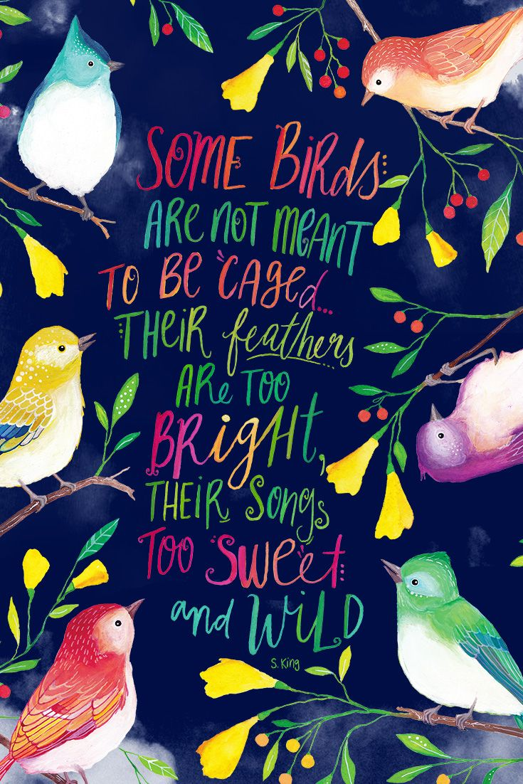 Some birds are not meant to be caged. Their feathers are too bright, their songs too sweet and wild.