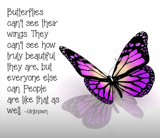 Butterflies Word Porn Quotes Love Quotes Life Quotes