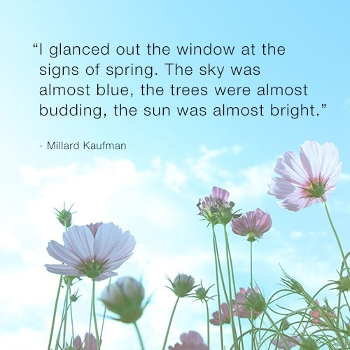 Cute Spring Quotes with Images