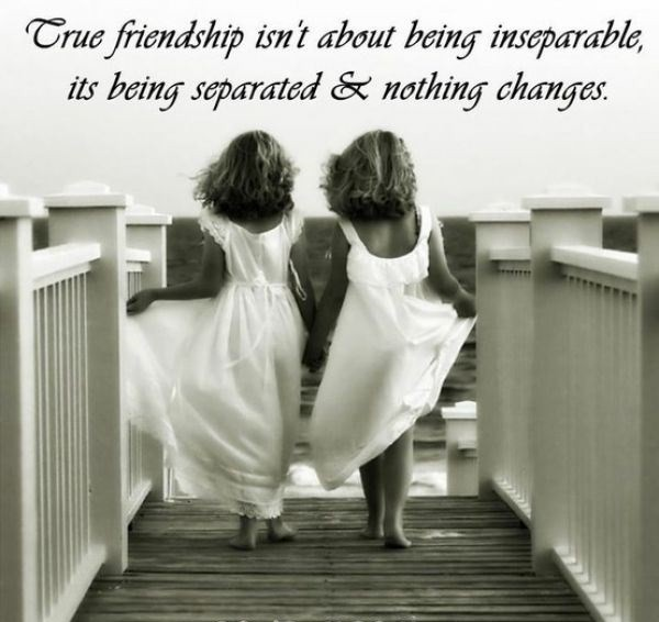 Charmant 37 True Friends Quotes And Sayings With Images