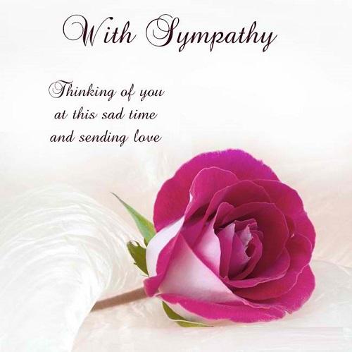 Cute Sympathy Quotes