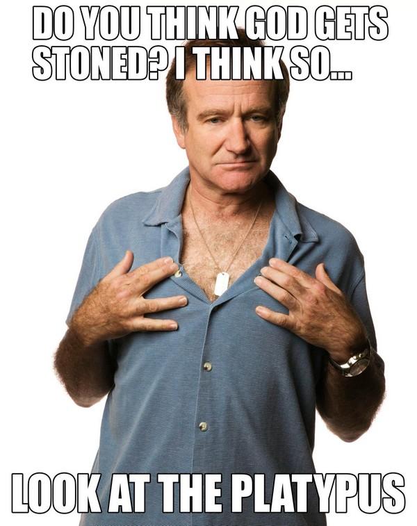 Robin Williams Quotes Happy