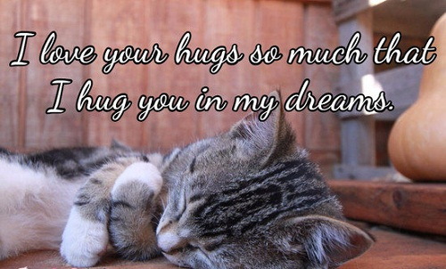 Love your Hugs Love Quotes for Her